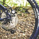 Mountain Biking In Epping Forest