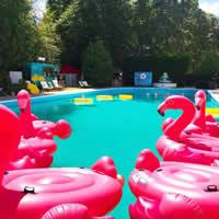 Kids Pool Parties