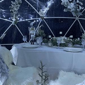 Winter Wonderland Dining Pods